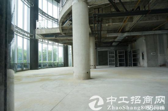 民歌湖广西国际金融中心火爆招租1000平方起