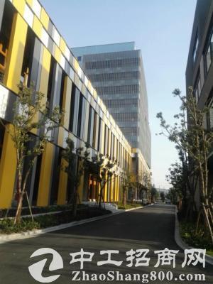 九亭大虹桥精装修商务楼140平起租得房率高