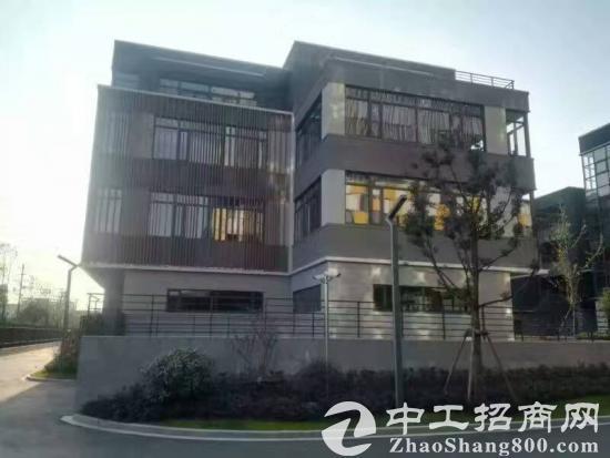 九亭唯一独栋总部办公楼1200平 高颜值