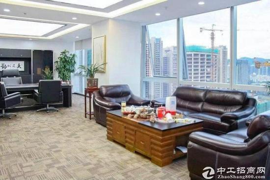 深圳湾生态园500平精装带家私朝南电梯口送绿植