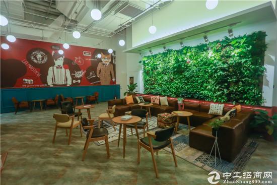 政府背景产业园,30平办公室 寻优质项目