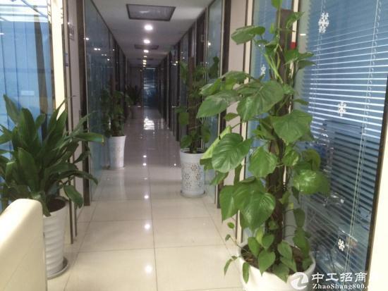 创业型办公室出租、免杂费、送家具宽带空调、物业直租