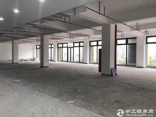 闵行吴泾104产业园,可注册环评,研发办公50~15000平