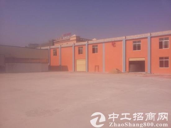 专业提供石井外贸仓库  货柜内装