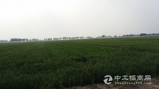 河南郑州郑东新区450亩耕地出租
