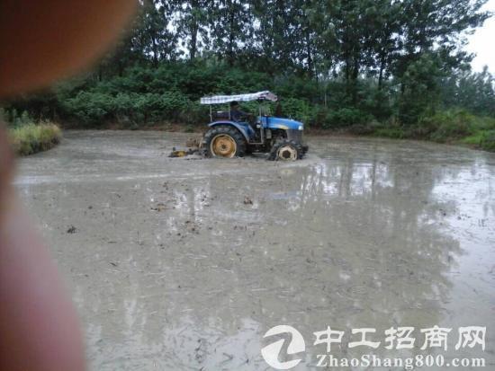 安徽滁州来安县700亩农业用地出租