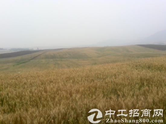 湖北襄阳襄州区400亩农用地转包