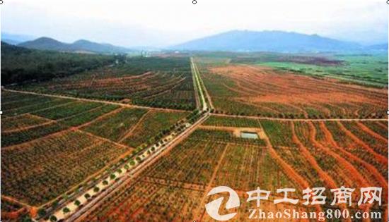 安徽省滁州市全椒县大墅镇5000亩土地寻求合作开发