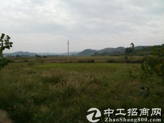 (出租)广东韶关市870亩地出租
