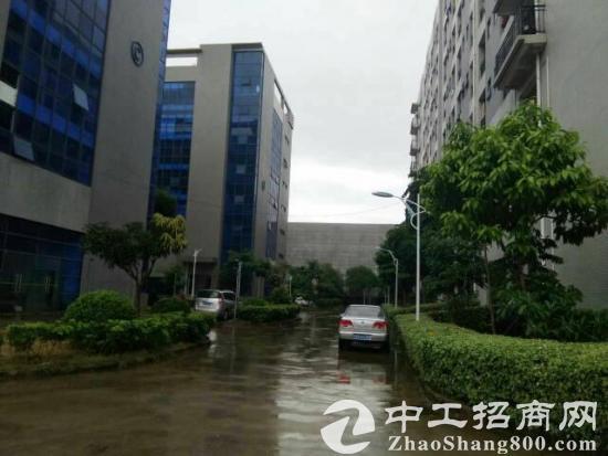 东莞生态园77.9亩国有土地出售