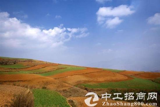 武汉汽车产业基地国有红本地皮招商 证件齐全,三通一平