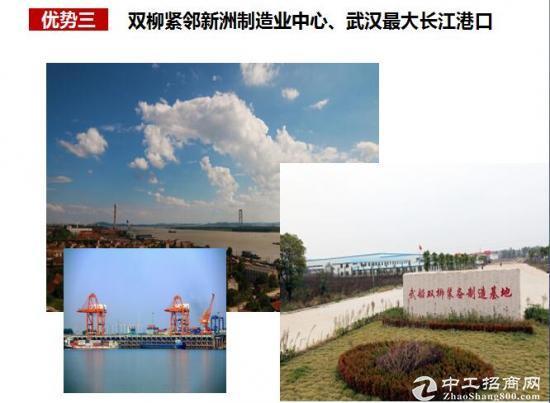 新洲高端产业区国有土地50年产权出售