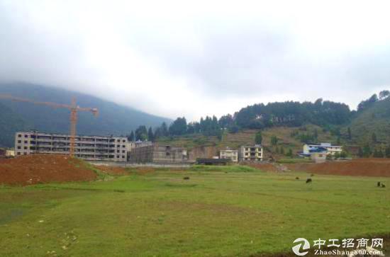 惠州惠阳区国有红本土地40亩出售