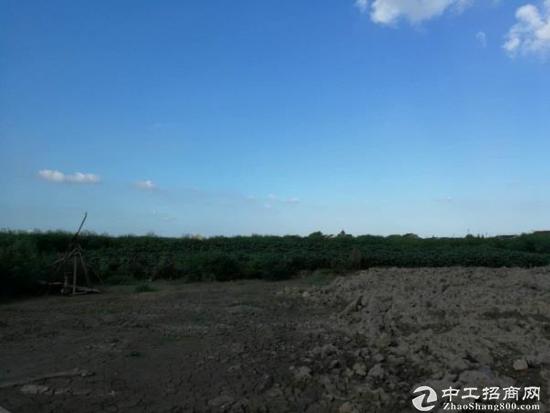 南浔国土工业指标用地招商出售  20亩起步