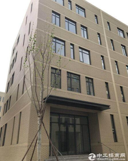 顺义仁和镇5层独栋研发厂房出租,可分租,价格好谈图片4