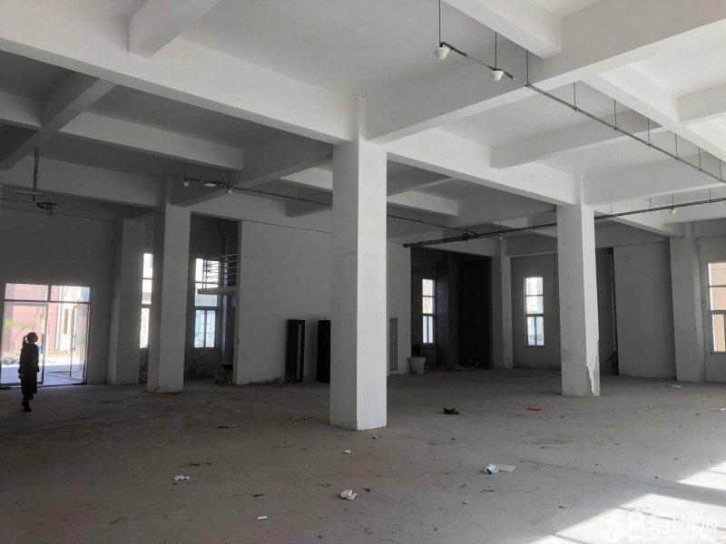 顺义仁和镇5层独栋研发厂房出租,可分租,价格好谈图片5