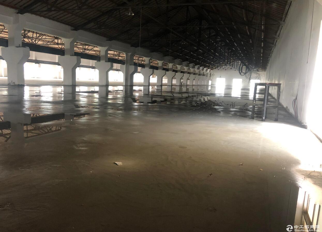 麒麟科创城 泉水社区 二楼仓库 带升降货梯 可分租-图3
