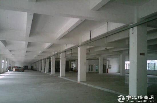 江宁一楼1000平米招租 合适4S店图片1