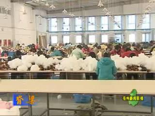 工业园,安徽蒙城经济开发区
