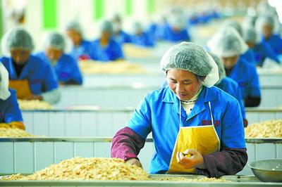 国际农副产品深加工产业基地