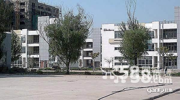 (开发商)可产+办公+研发1464平米三层独立别墅