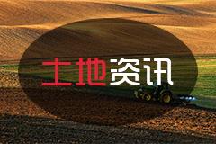 农民在自家耕地上建房违法吗?