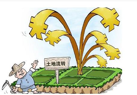 高明计划三年将整治提升2万亩低效产业用地