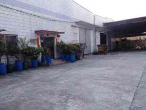 茶山镇新出东部快线边上1500平米独院单-层厂房招租