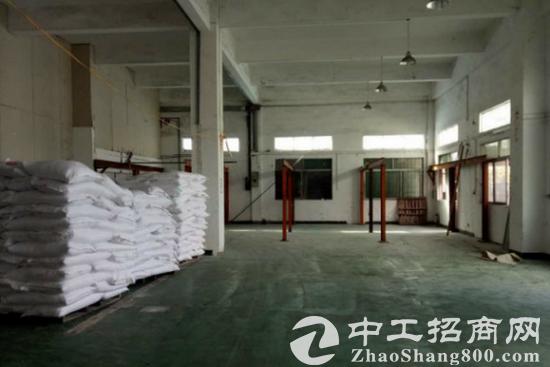 常平空出一楼800平方带地板漆厂房招租