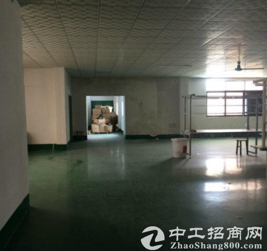 沙田独院原房东9.5成新厂房7200精装办公室出租