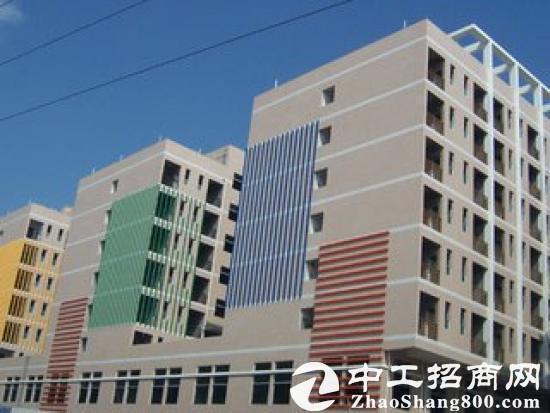 售龙华独院工业园区-图2