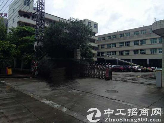 东城区建筑15282 国有产权厂房出售