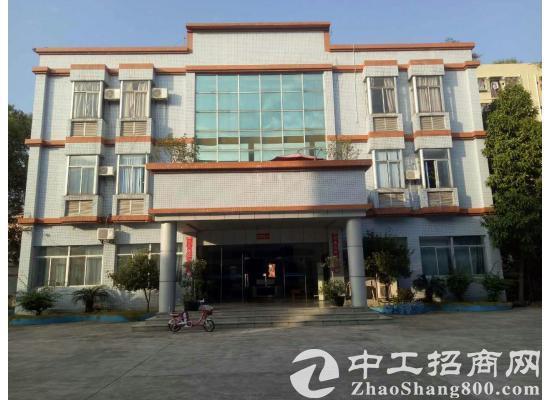 江门高新产业园10000平方独立厂房出售
