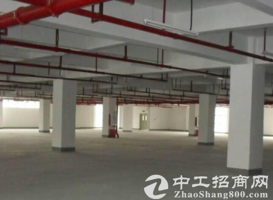 大朗新出独院厂房20000平米