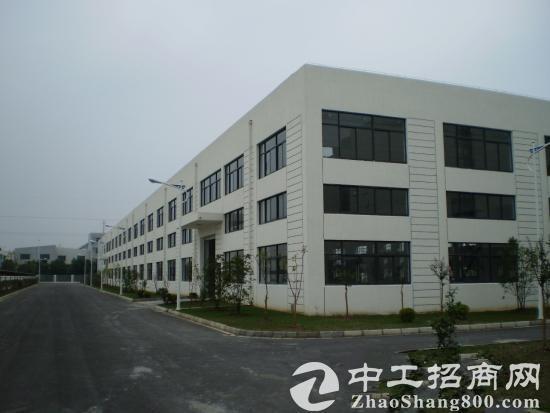 福龙路 高新产业园一楼5000平 二楼5000平