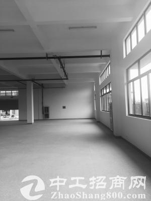 余杭区大面积厂房仓库出租 可做淘宝仓库办公 轻工业-图3