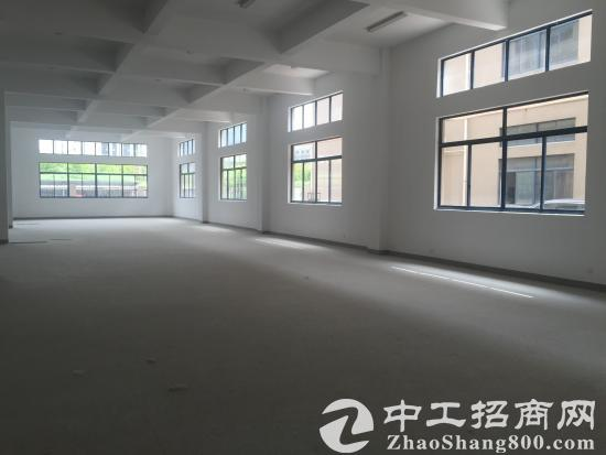 余杭区大面积厂房仓库出租 可做淘宝仓库办公 轻工业-图5