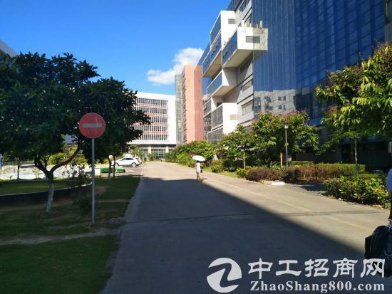 龙岗 与 坪山 宝龙 工业区 全新园区 500平方起大小分租-图4