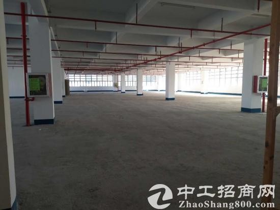 龙岗 与 坪山 宝龙 工业区 全新园区 500平方起大小分租-图6