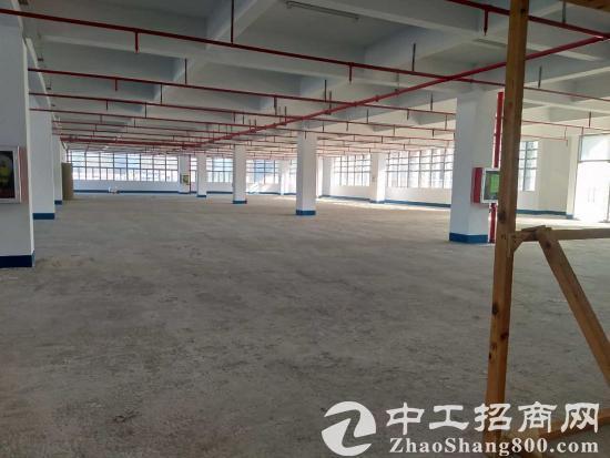 龙岗 与 坪山 宝龙 工业区 全新园区 500平方起大小分租-图3