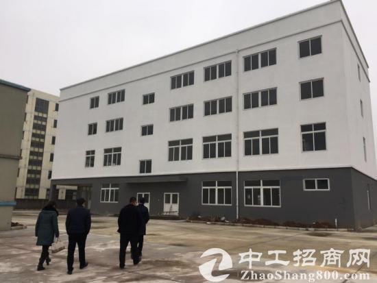 南京市区半小时经济圈 新建厂房总面积60亩出售图片2