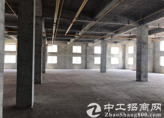 出租江夏庙山武汉汽车公园旁优质新建厂房