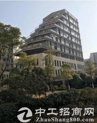 武汉当代电子硅谷一楼标准厂房现房出售