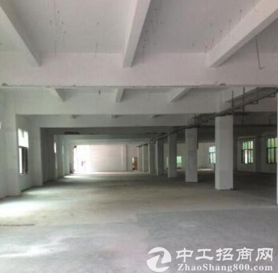 租售江宁附近土地60亩仓库厂房6000平米图片1