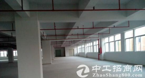 白下高新产业园楼上8000平标准厂房招租