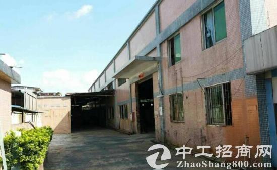 金安六寿路木厂段450平厂房出租