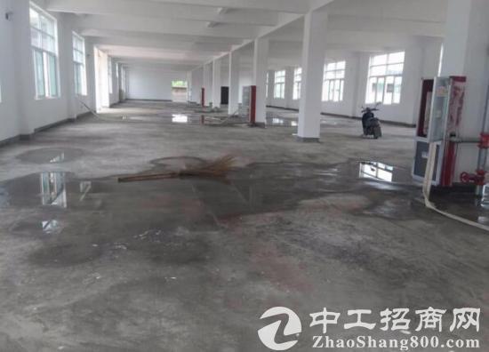 裕安全新仓库 厂房 综合楼 出租 大面积出租