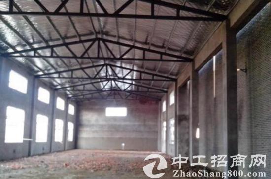 和县经济开发区 钢结构厂房出租
