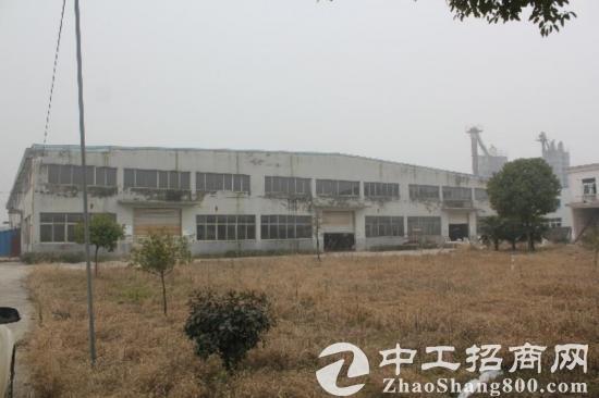 独栋钢混结构标准厂房4500平出租图片1