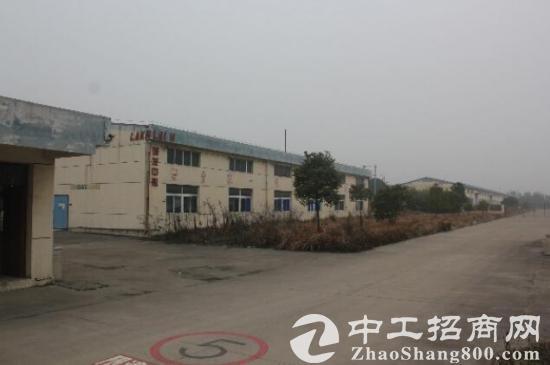 独门独院钢混结构标准化厂房5000平出售图片1